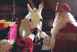 Sinterklaas-loek knippels article