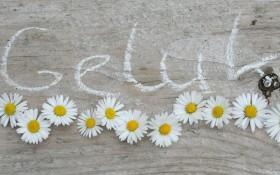 geluk ervaren-loek knippels article